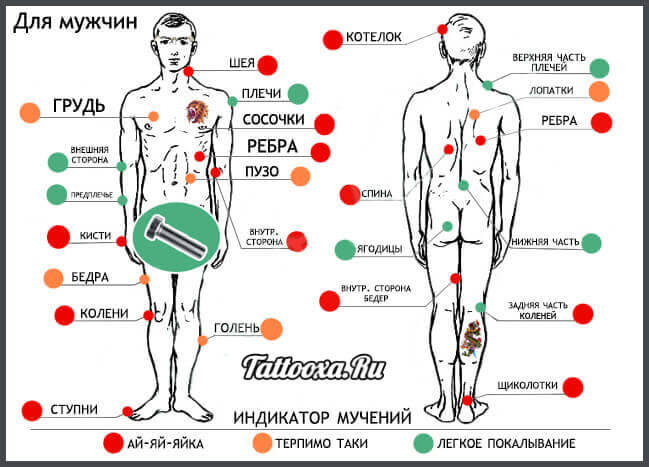 Карта боли при нанесении тату на мужское тело