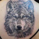 Значение тату волк у парней